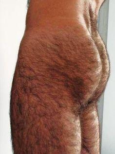 Super hairy ass