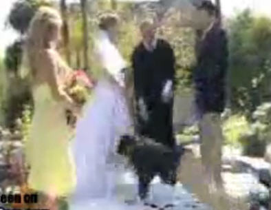Las Always Make Sure Your Bridegroom S Best Man Isn T A Klutz That You Don Have Pool Of Water Behind And Drag